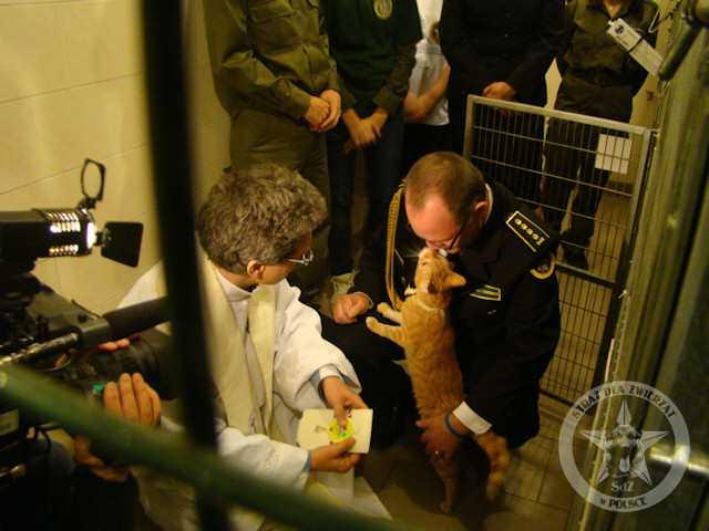 Ogromna radość, wspaniała wizyta Animalpastora