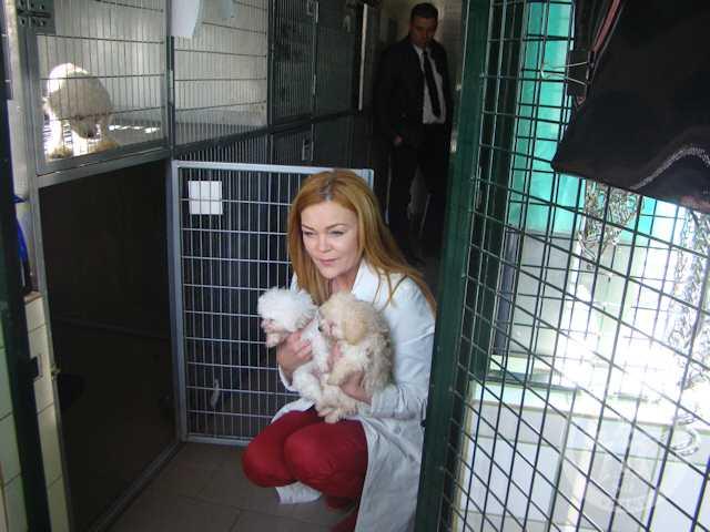 Kolejny miły, ciepły i kochany Ambasador naszych zwierzaków