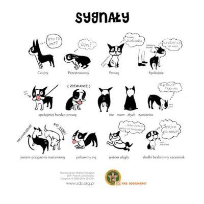 Co chce powiedzieć Wasz pies?